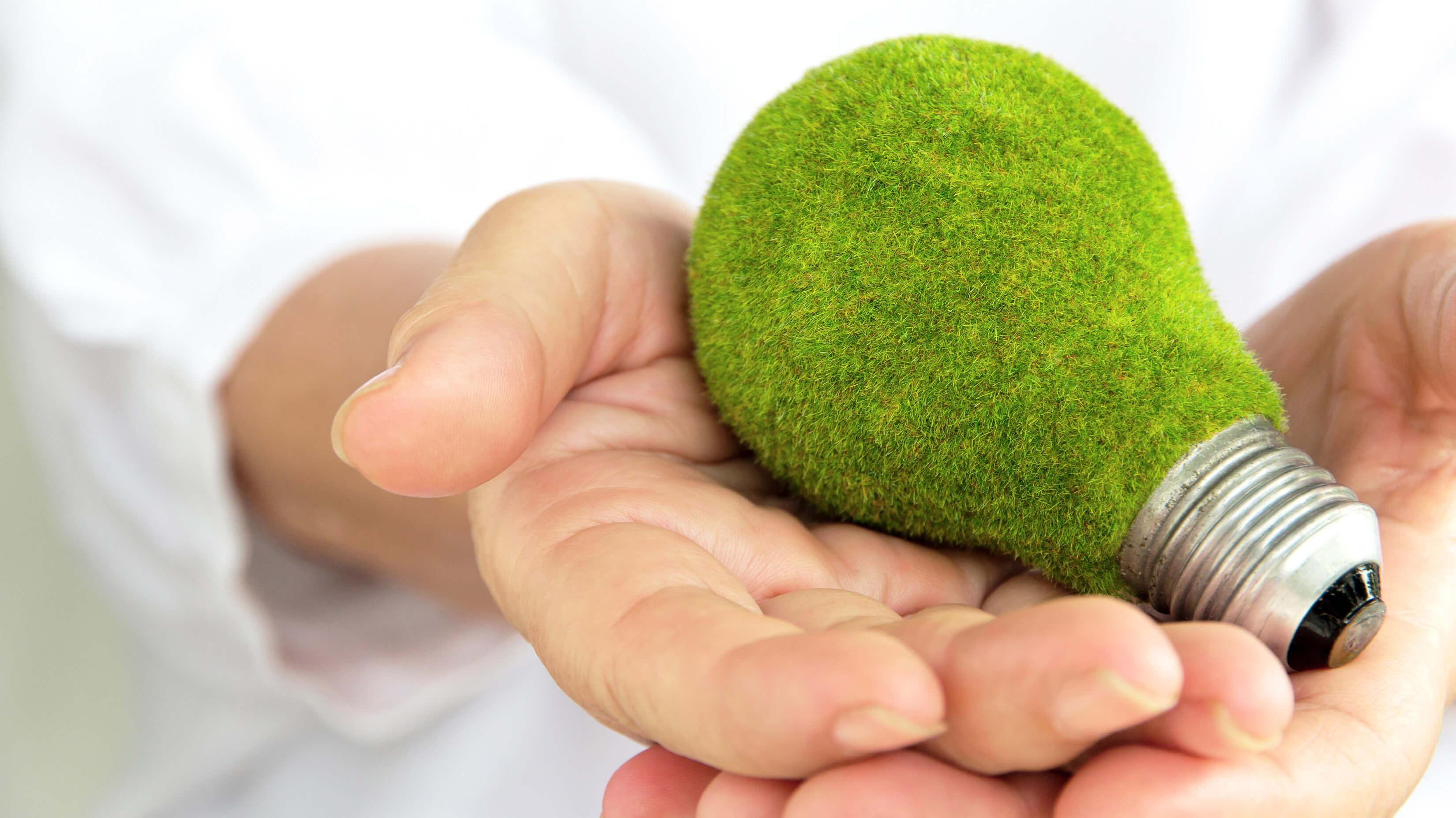 Energieeffizient wirtschaften